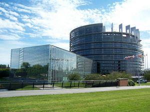 Services avec chauffeur pour Eurodéputés et visite Parlement Européen